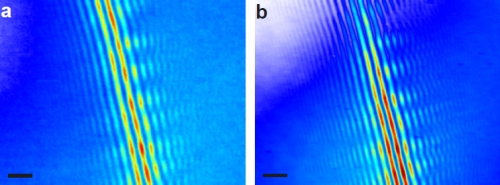Electrons emitted from a nanotip interfere at a carbon nanotube beam splitter. In (a) electrons are laser-emitted, while in (b) DC field emission is investigated. In both cases the transverse coherence, directly indicated by the number of fringes, is very high. May 2015